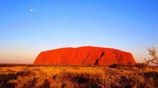 """小さい頃からの夢だったCAが """"実は違ったという事実"""" を発見したオーストラリア"""