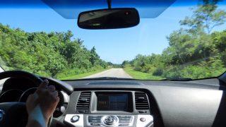今日のちょっとだけフレーズ rearview mirror/バックミラー